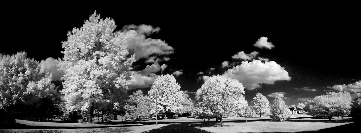 view in the front of our house done in infrared all color removed resulting a powerful black and white scene - Infrared in front of my house - Techno-Impressionist Museum - Techno-Impressionism - art - beautiful - photo photography picture - by Tony Karp