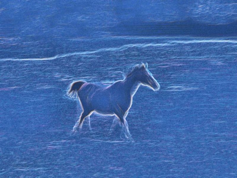 hose in the field with a blue hue - Horse on the next road - Techno-Impressionist Museum - Techno-Impressionism - art - beautiful - photo photography picture - by Tony Karp