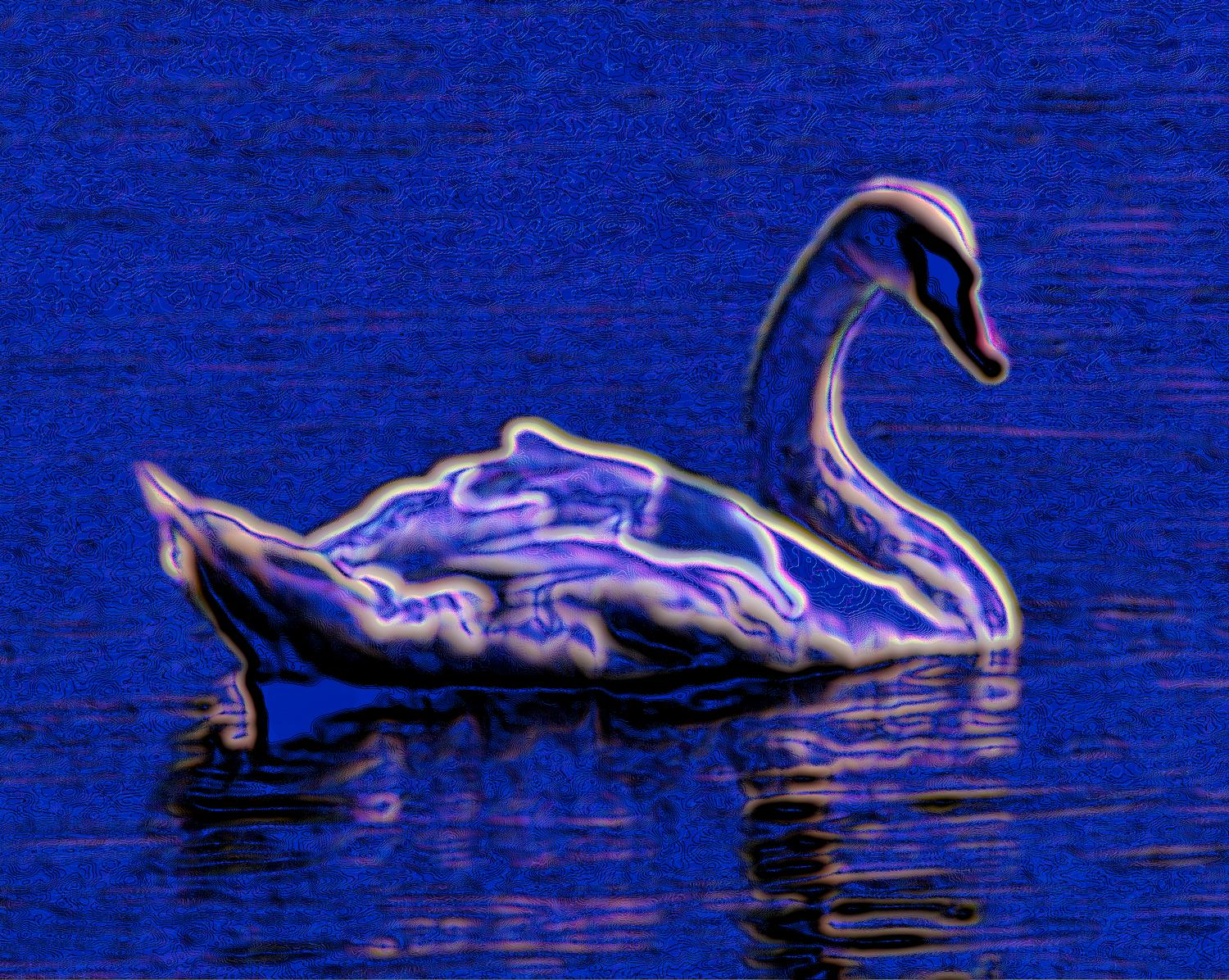 - Electric Swan - Exhibit in the artist's studio/gallery - Techno-Impressionist Museum - Techno-Impressionism - art - beautiful - photo photography picture - by Tony Karp