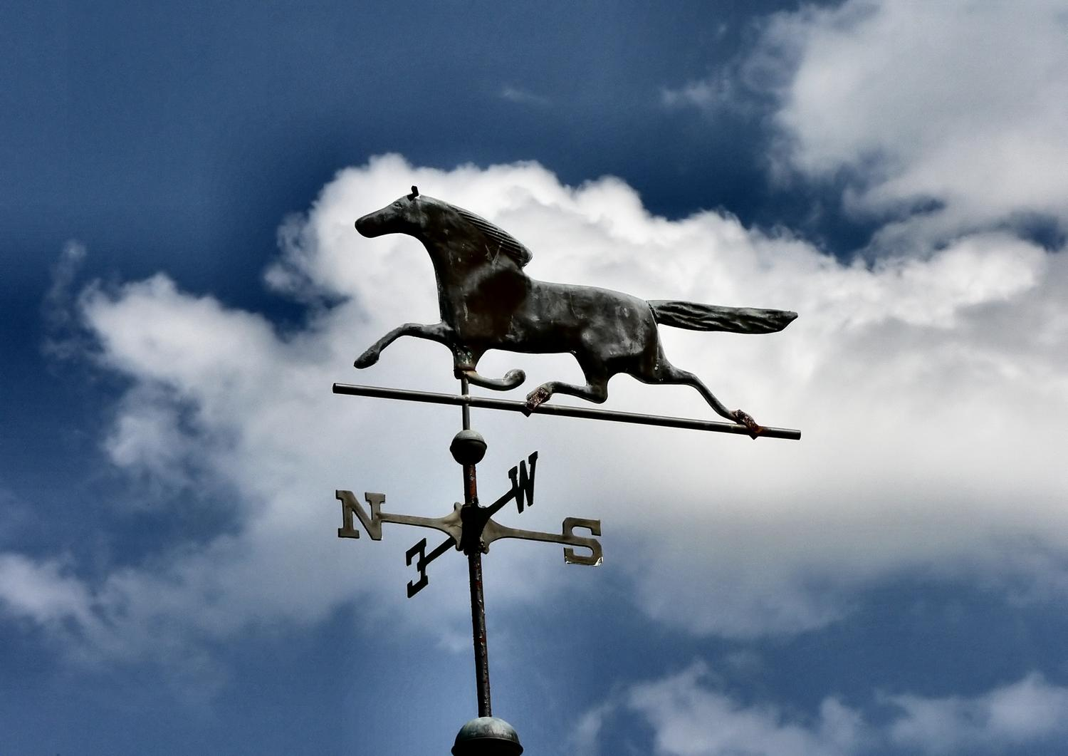 - Horse over my head # 1 - Techno-Impressionist Museum - Techno-Impressionism - art - beautiful - photo photography picture - by Tony Karp