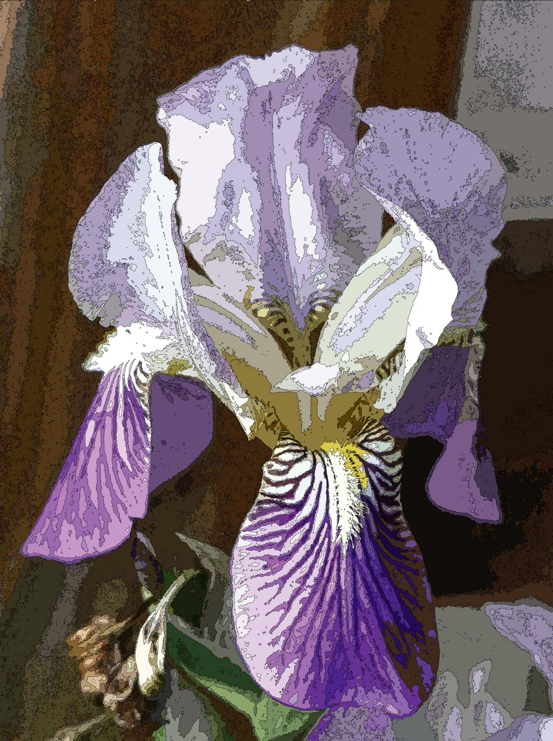 white and purple iris style divisionism - Iris with fine lines</Center><p></p> - Techno-Impressionist Museum - Techno-Impressionism - art - beautiful - photo photography picture - by Tony Karp